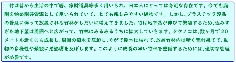 竹林整備①-4.png