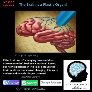 Brain is a Plastic Organ