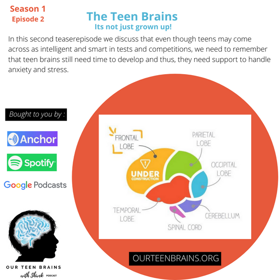 The Teen Brain: It's just not grown up!