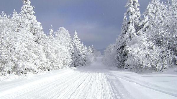 snowmobiletrail-2.jpg
