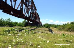 90-AN-Shemgona Bridge_2013