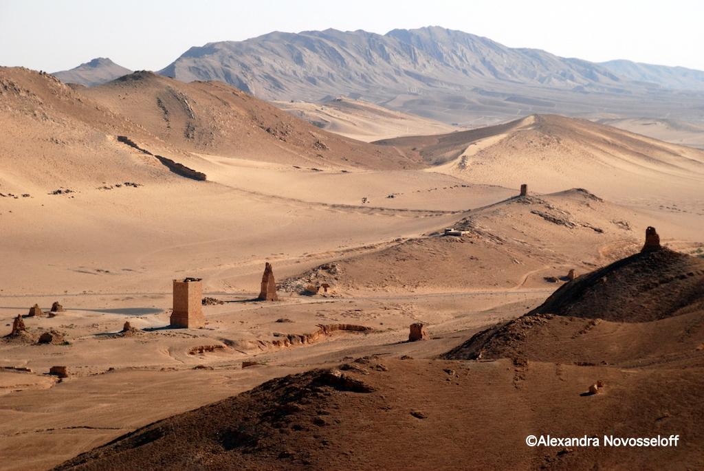 48-Palmyre