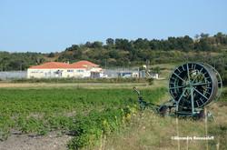 31-AN-Evros-Philakio Detention Center_2014