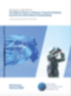 GGI 2020 Report_Cover.png