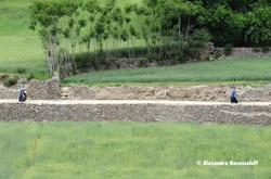 105-AN_Piandj-Afghanes_de_l'autre_côté_du_fleuve_2015