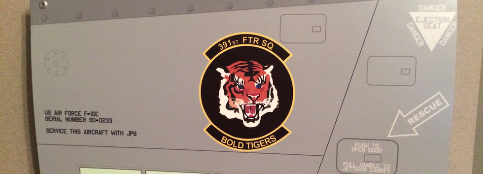 F-15E 391FS