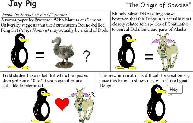 The Origin of Species.jpg
