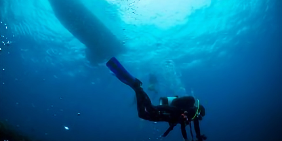 Steve and Mike's Amazing Weekday Adventures (Double Dive)