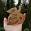 Thumbnail: Wooden Leaf Touch Wood Pyrography Wood Burning