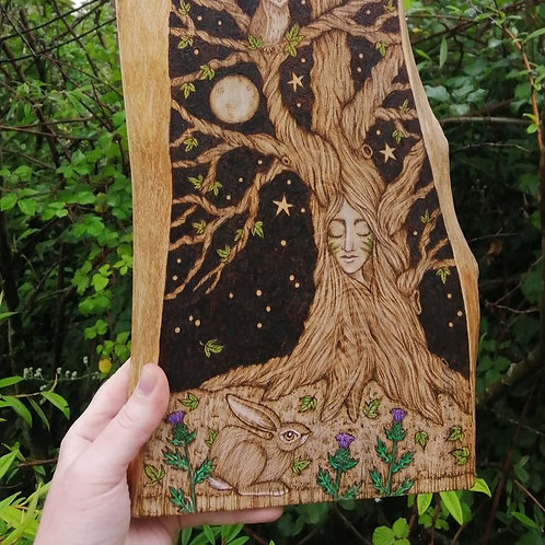 The Owl , The Hare , Thistles and the Wise Old Tree Wood Burning Pyrography