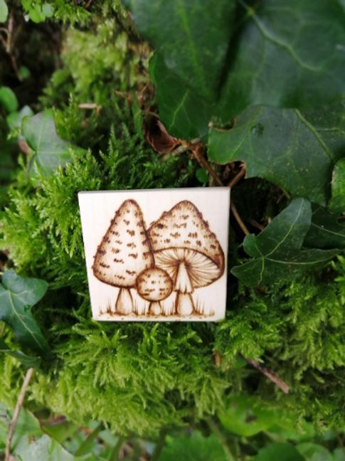 Mushroom Toadstool Fungi brooch pin hand burnt pyrography