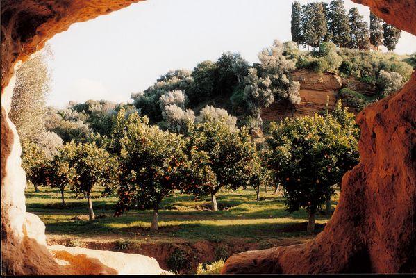 Giardino della Kolymbetra