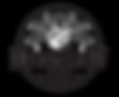 mf-logo-061719.png