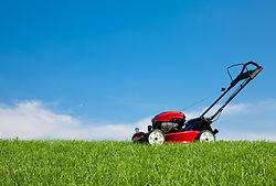 new petrol lawnmower thats cutting a big lawn