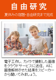 Summer School_自由研究_2019.png
