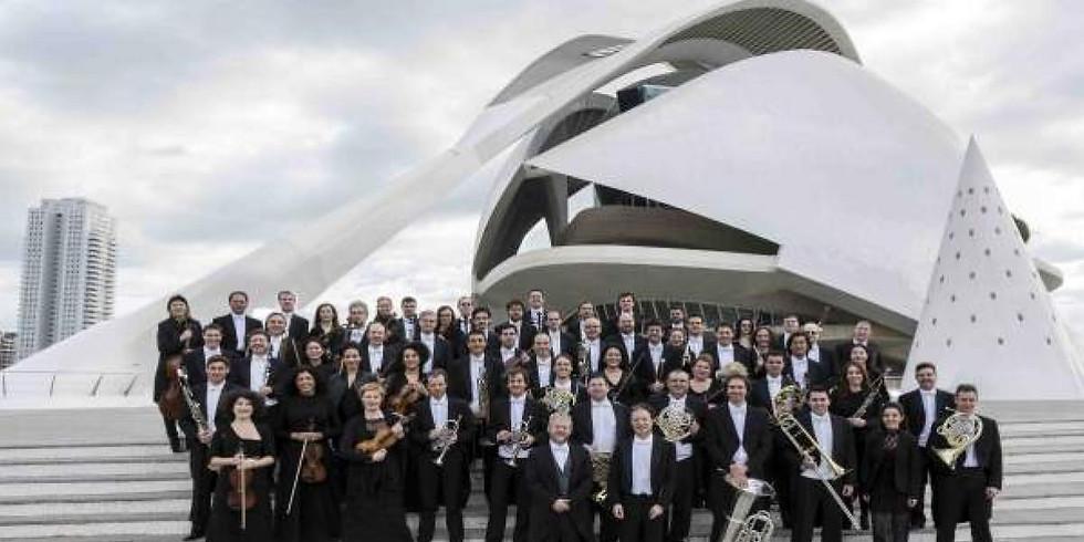 Orquestra de la Comunitat Valenciana   Jornada Portes Obertes Palau de Les Arts