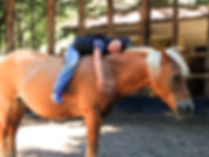 MOLISE B&B Agnone Horse Riding