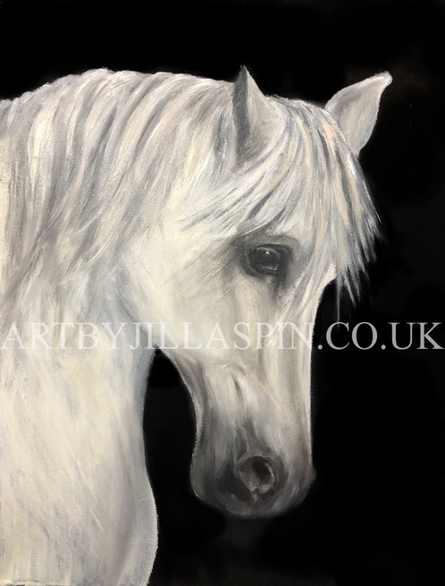 Oil Painting Grey horse Watermarked.jpg