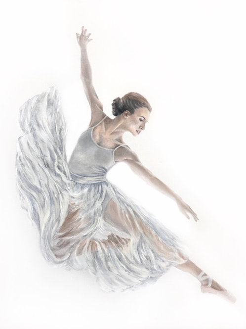 Silver in Flight- Limited Edition Print