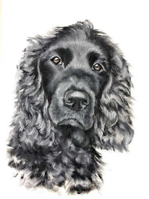 Black Spaniel - Original Oil Painting