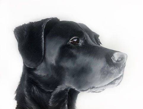 Oil Painting Black dog
