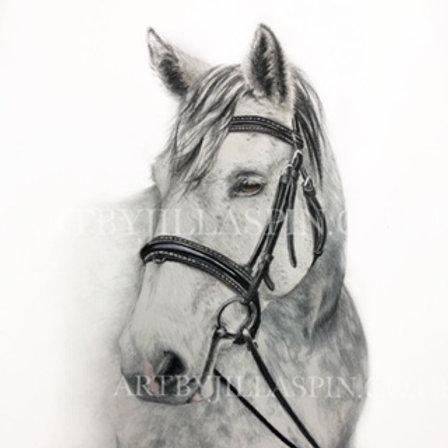 Dappled Grey Horse - Limited Edition Print
