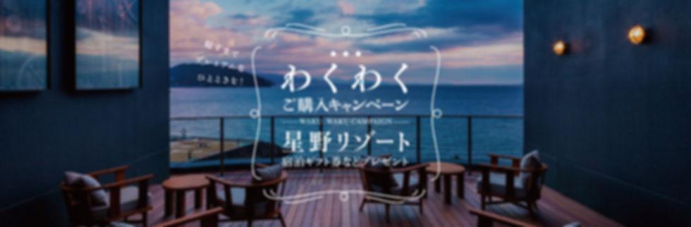 Screenshot_2019-11-21 【三協アルミ 庭すまいるショップ】わ