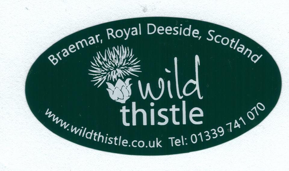 Wild Thistle