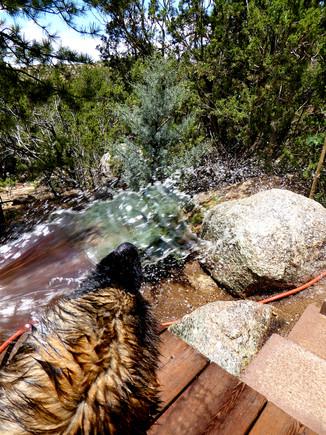 46 OLIVE waterwork1
