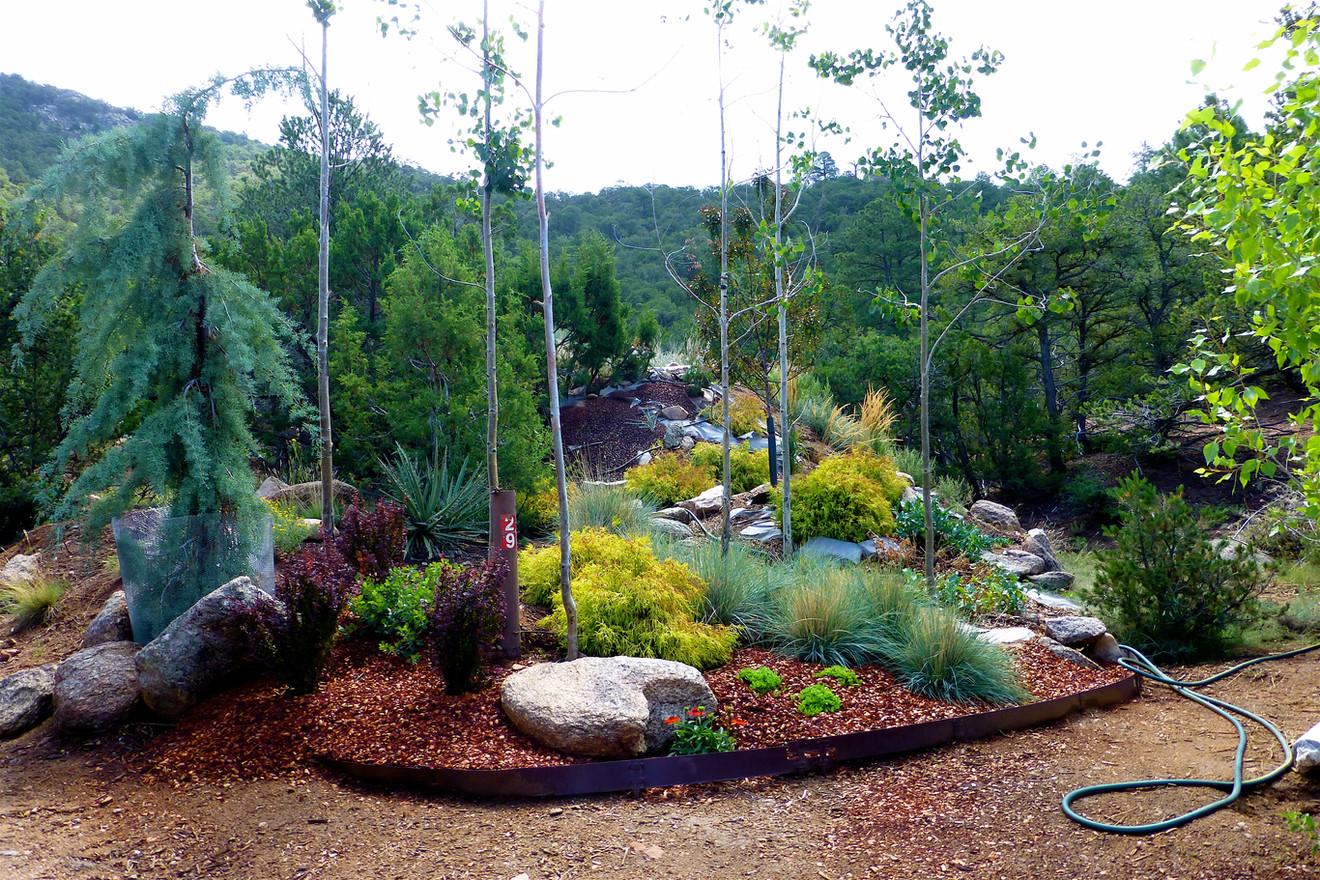 14 DogForest Entry Landscape Architecture