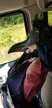 bird lady halloween.jpg