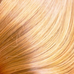 9.03 Palest Soft Gold Blonde