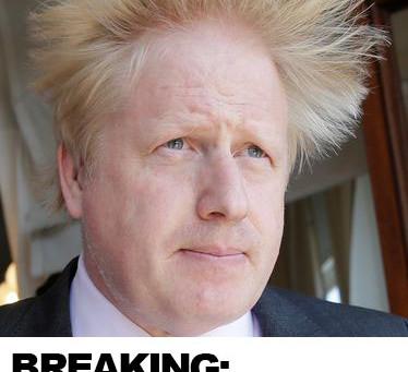 BREAKING: Boris' Hair at Home Tips! 🙌🏻