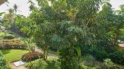 Garden View Balcony