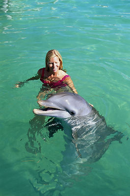 swim with dolphins.jpg