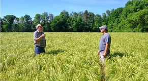 Cornell Farmers.jpg