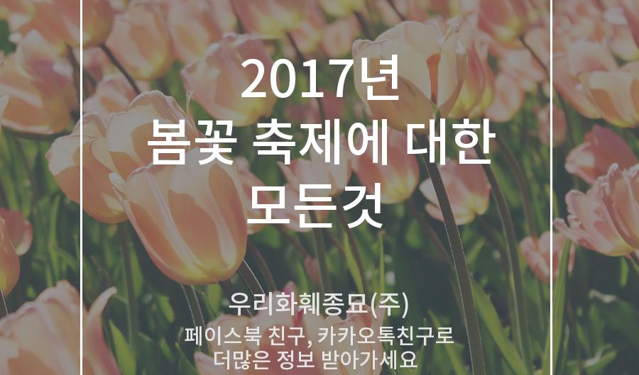 2017년 봄꽃 축제 정보