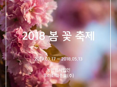2018년 봄 축제 정보