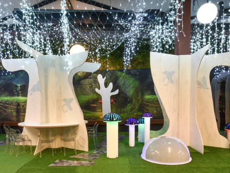 Enchanted Forest in Wetherill Park