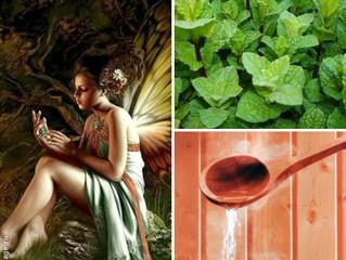 Мятная история в преддверии дня  Святого Валентина (плюс полезные свойства мятного масла в бане)