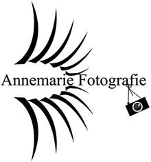 nieuw logo.png