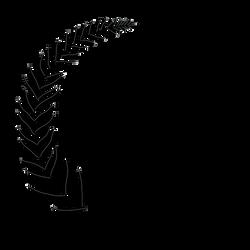 Logo-1-No-Bg