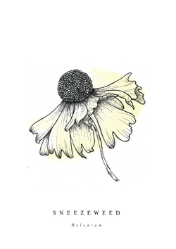 Clara Moseley LP Print 02
