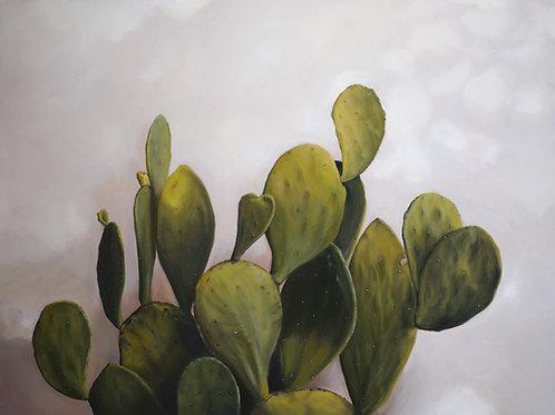 My Cactus Heart - Canvas Print