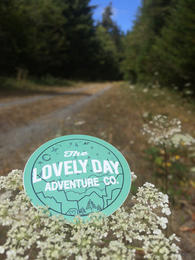 marketing and creative services_lovely day adventure company_ nature