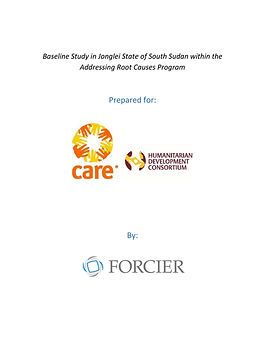 CARE cover page.jpg