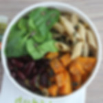 Salad Bowl Pates Bio.jpg