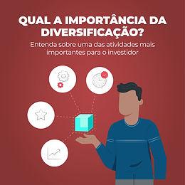 Qual a Importância da Diversificação?