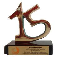 1. 15  anos 12x12 em bronze.JPG