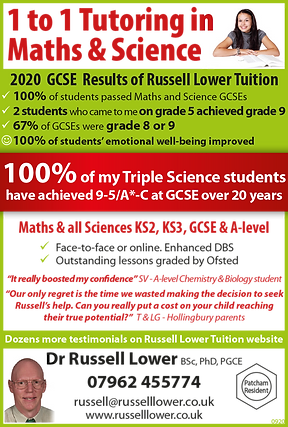Russell Lower Science and Maths Tuition 2020 GCSE Results.png